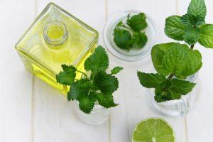 profumo ambiente ideale menta-limone