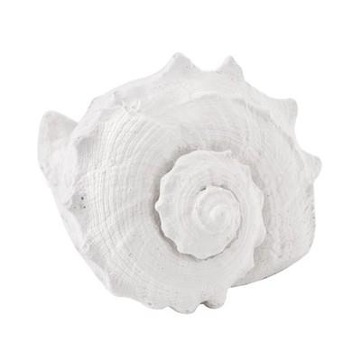 diffusore in gess profumato a forma di conchiglia tipo lumaca  - Mathilde M