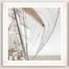 quadro barca a vela colo seppia